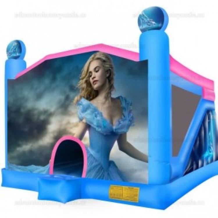 Cinderella Castle and Slide