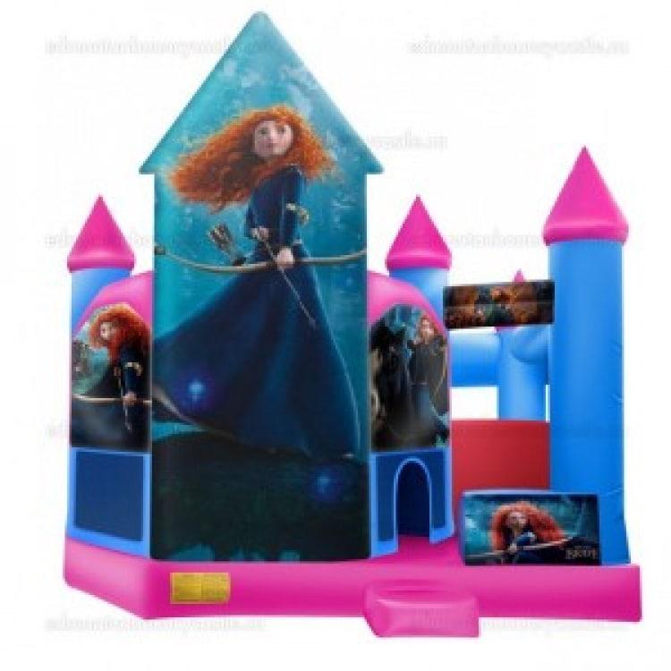 Brave Castle & Slide