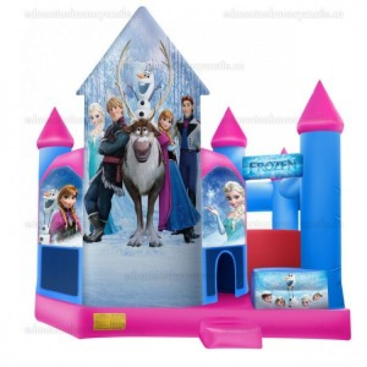 Tall Frozen Castle and Slide